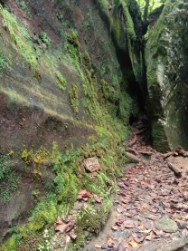 Dismal Canyon