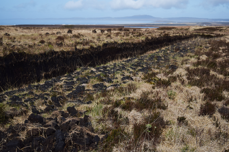 11-Laphroaig-Distillery-Peat-Fields-in-Islay-Scotland-Scottish-Routes-Whisky-Tour-Review