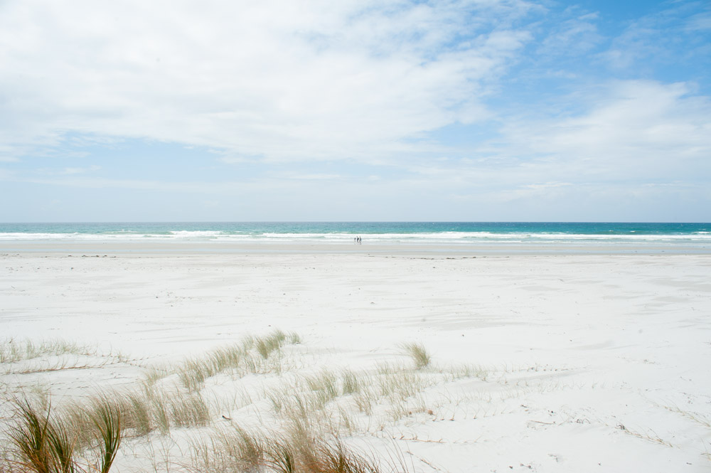 The white sands of Rarawa beach - one of the best things to do in the Northland region of New Zealand