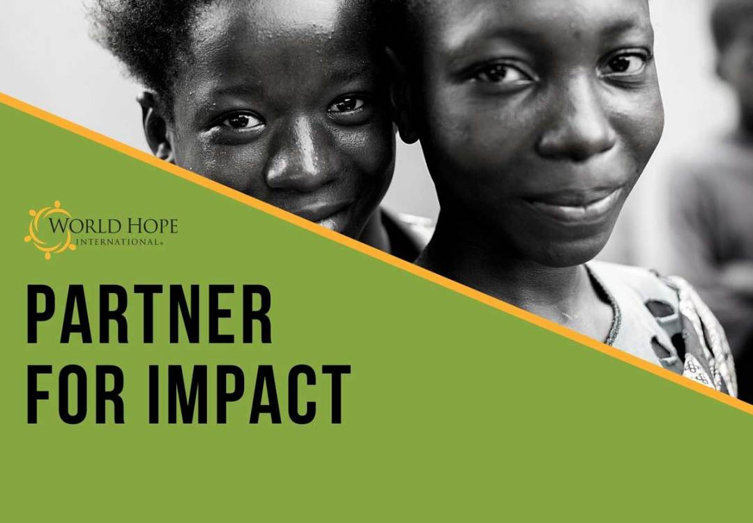 Download Partner for Impact PDF