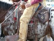 The Hashknife Pony Express AZ