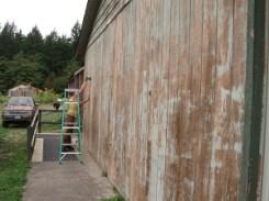 garden resource center painting prep work party_0435