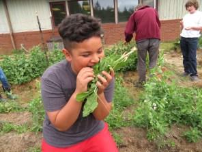 Snack garden eating2_2070