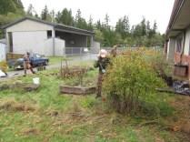 snack garden renovating2_5744