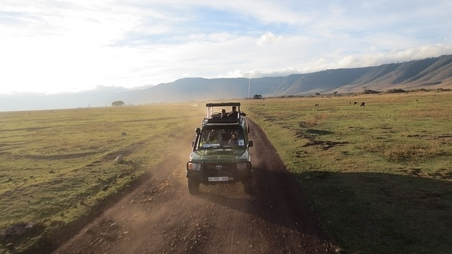 game drive at ngorongoro crater