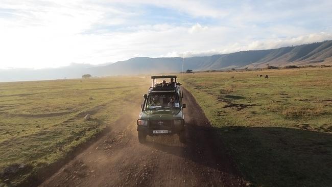 game drive at ngorongoro crater