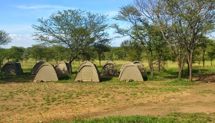 budget camp in serengeti