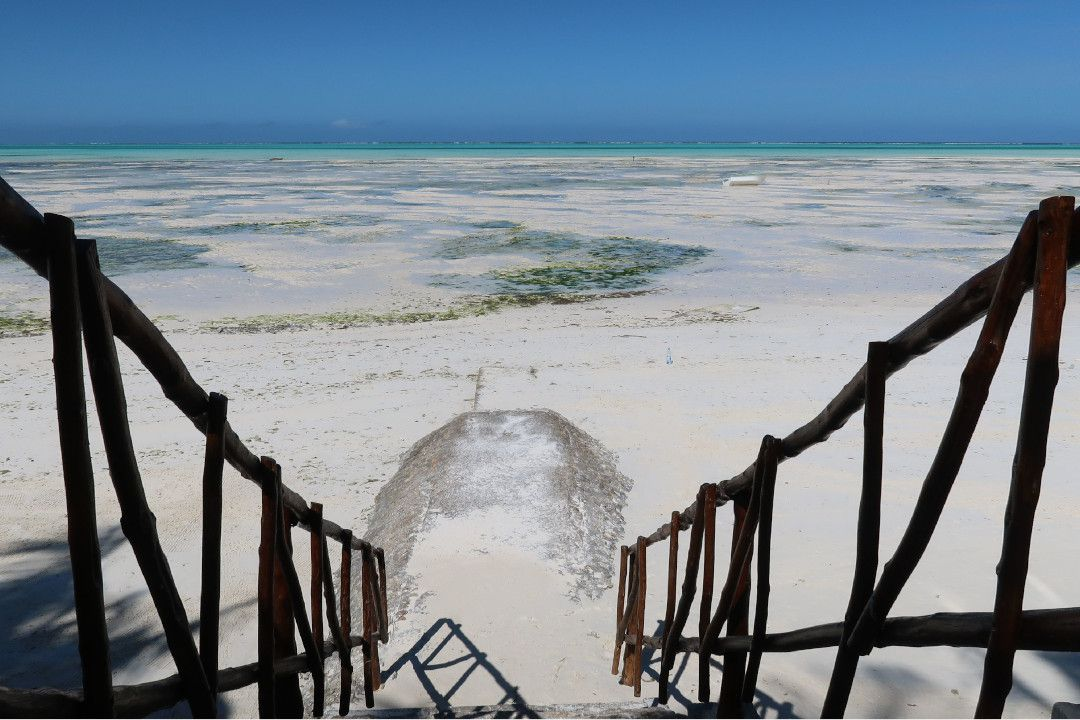 White Sand of Zanzibar - whileinafrica