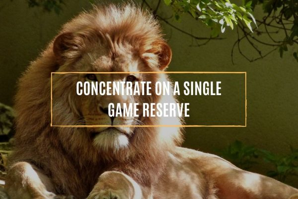 concentrate-on-a-single-game-reserve.whileinafrca