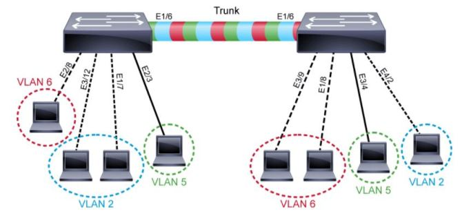 VLAN and Trunk