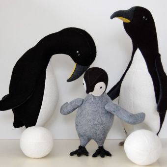 the penguin family is growing