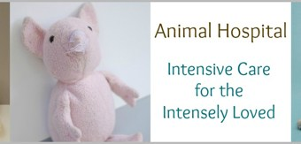 How to Repair a Stuffed Animal: Restuffing