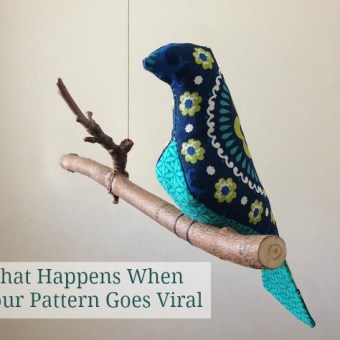 What Happens When Your Pattern Goes Viral: The Spool Bird