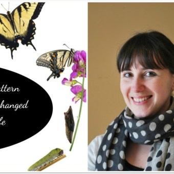 The Pattern that Changed My Life: Mollie Johanson
