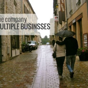 One Company, Multiple Businesses