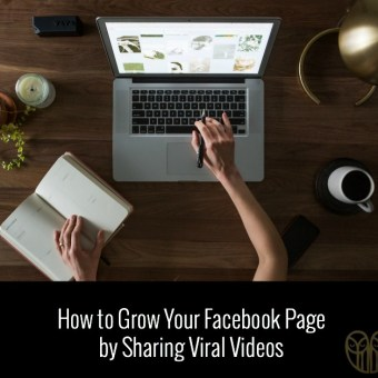 How to Grow Your Facebook Page By Sharing Viral Videos