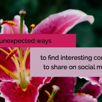 5 Unexpected Ways to Find Interesting Craft Content to Share on Social Media
