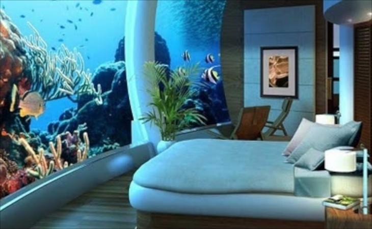 aquariums & decor