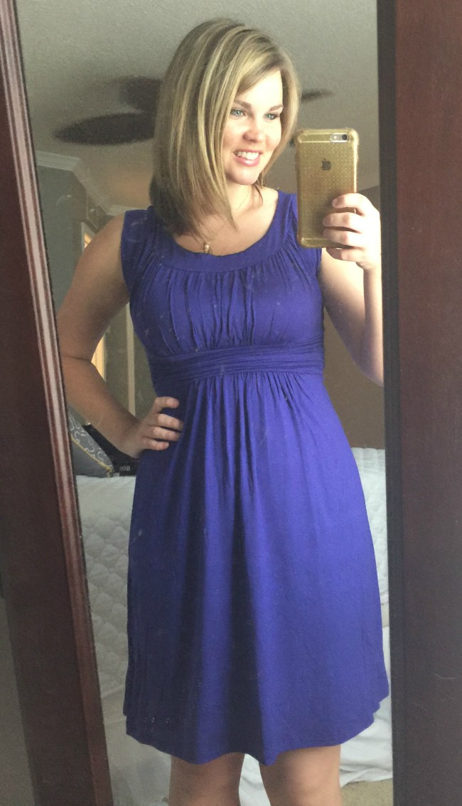 Stitch Fix - Kamile Knit Dress