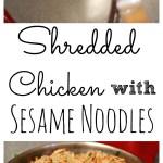 Shredded Chicken with Sesame Noodles