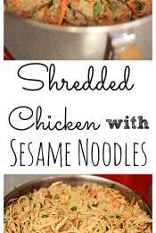 Shredded Chicken with Sesame Noodles