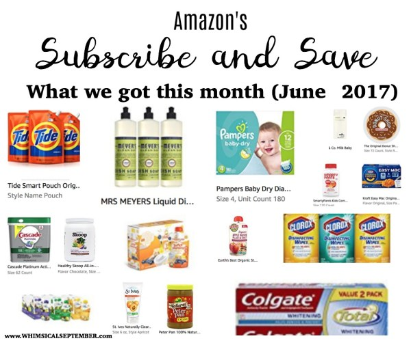 Our Subscribe and Save June 2017 Items