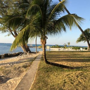 Our Family Vacation to Grand Cayman / Part Two: Rum Point