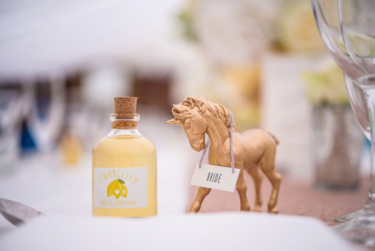 Horse Place Name Drink Favour Whimsical Boho Glamour Pink Blue Gold Wedding http://www.sarareeve.com/