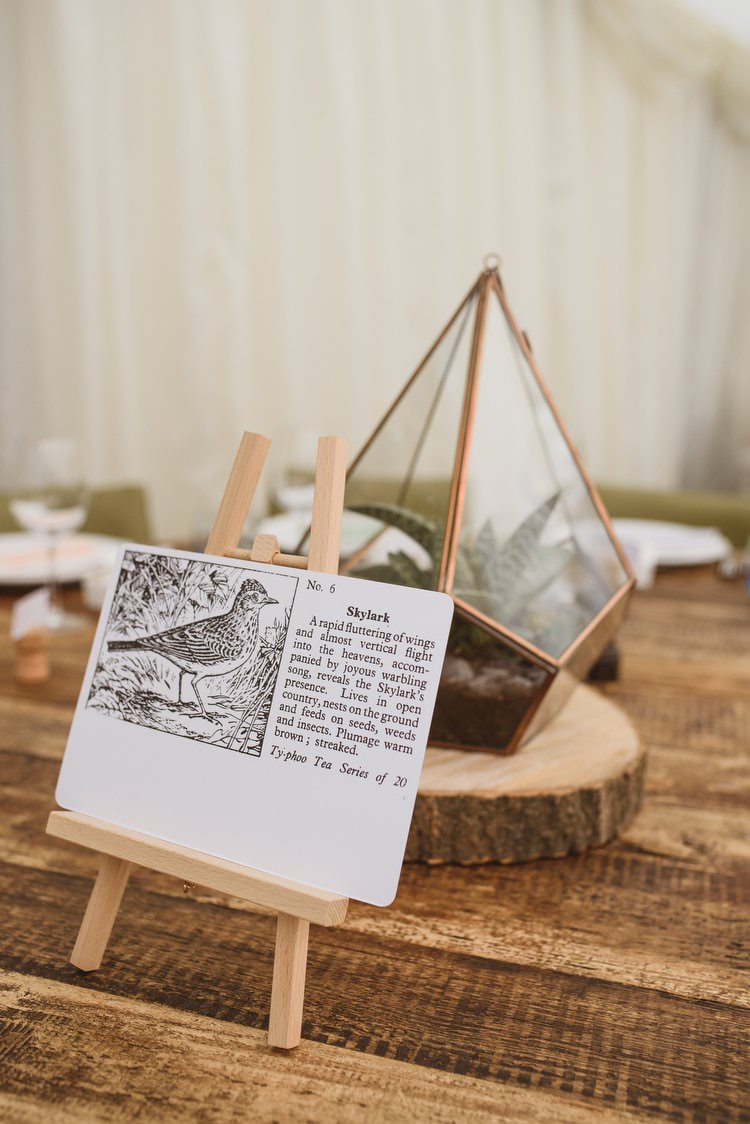 Terranium Bird Table Names Centrepiece Decor Crafty Botanical Natural Wedding http://www.jacksonandcophotography.com/