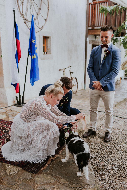 Dog Pet Ring Ceremony Slovenia Wedding Bohemian Maja Tsolo Photography
