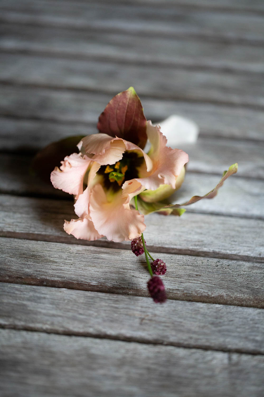 Groom Buttonhole Flowers Berry Château Elopement France Maru Photography