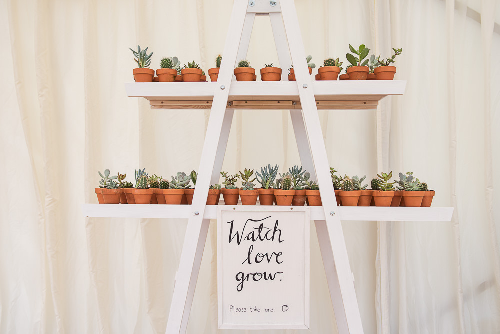 Succulent Favours Sopley Lake Wedding One Thousand Words