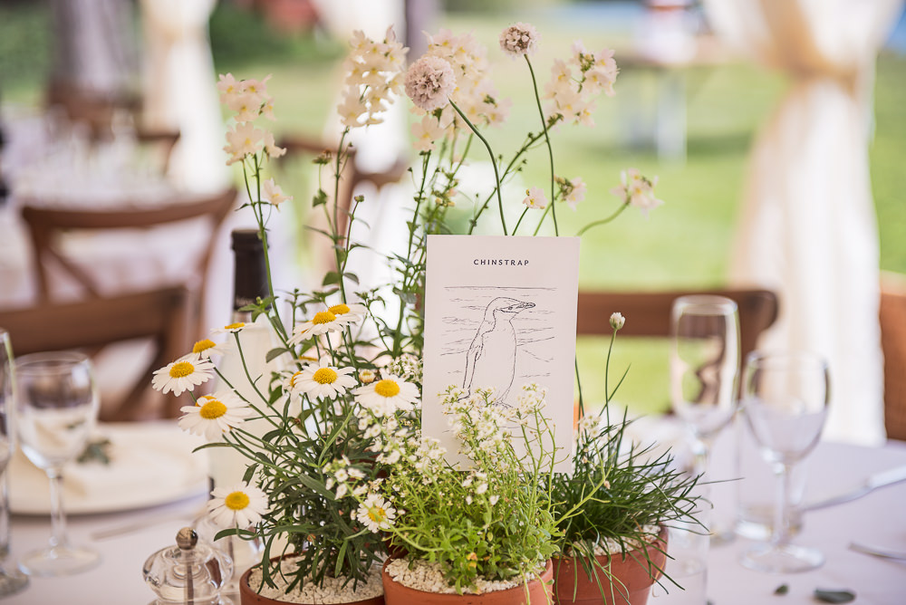 Centrepiece Flowers Pot Plants Decor Sopley Lake Wedding One Thousand Words