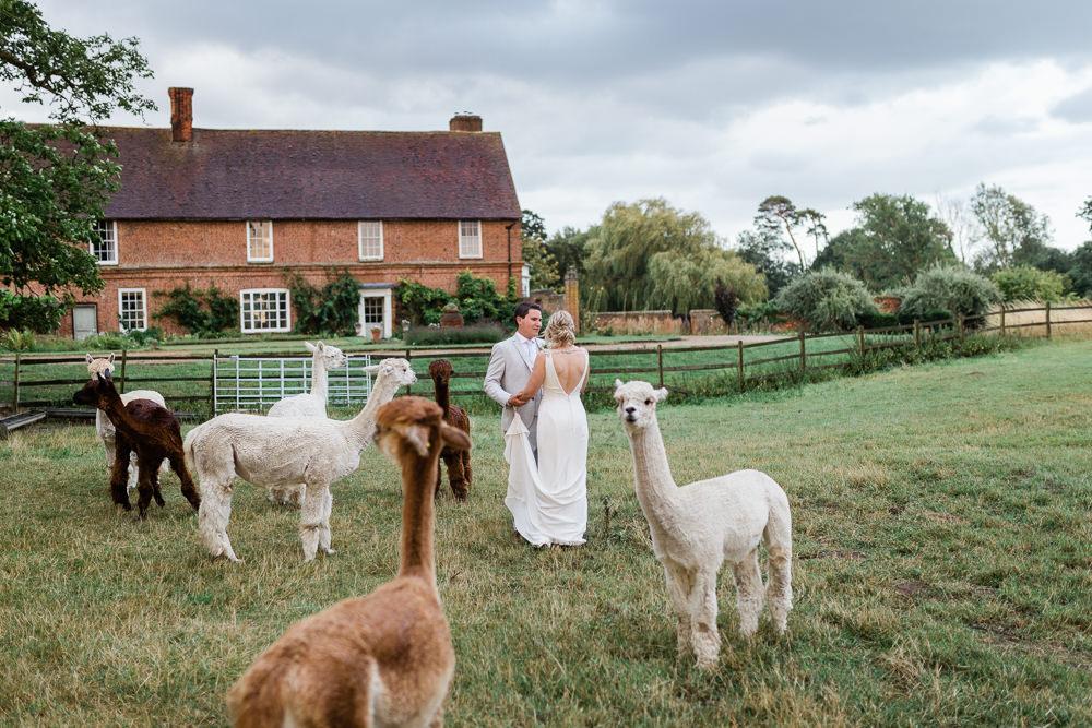 Llamas Great Lodge Wedding Gemma Giorgio Photography