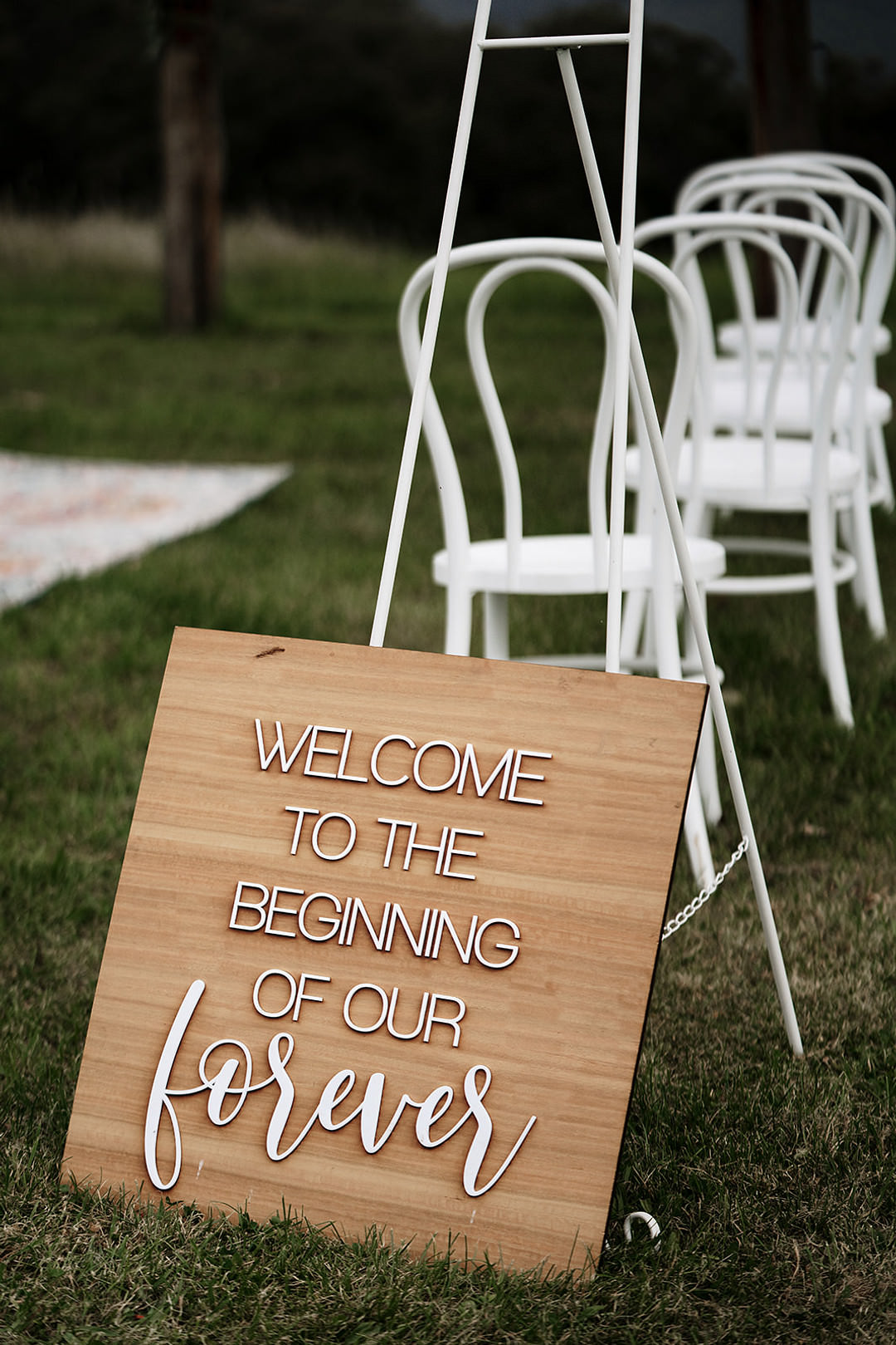 Sign Signs Signage Wooden Painted Mountain Elopement Petite Visuals
