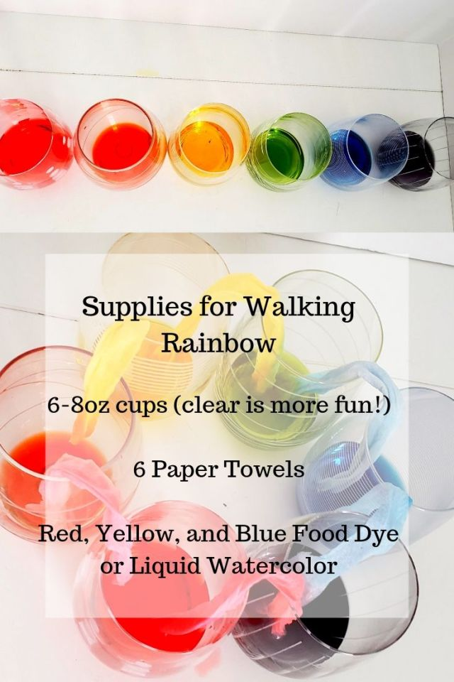Supplies for Walking Rainbow