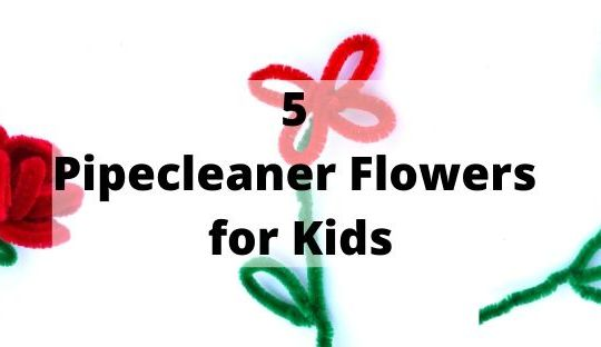 pipecleaner flowers cover