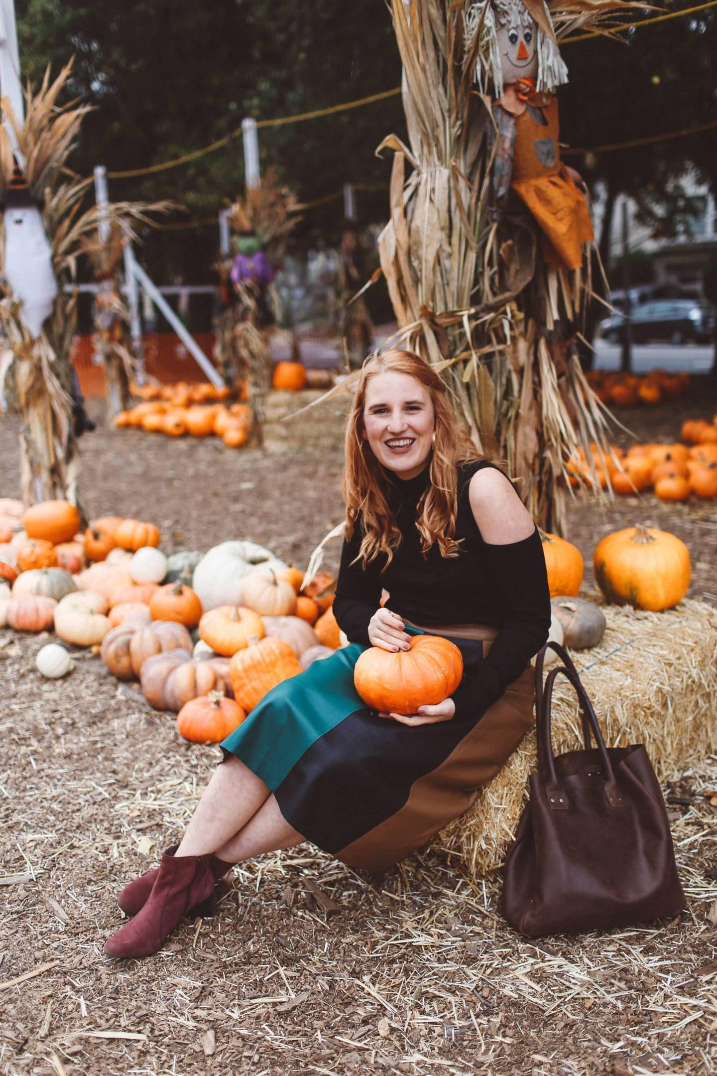 san francisco pumpkin patch