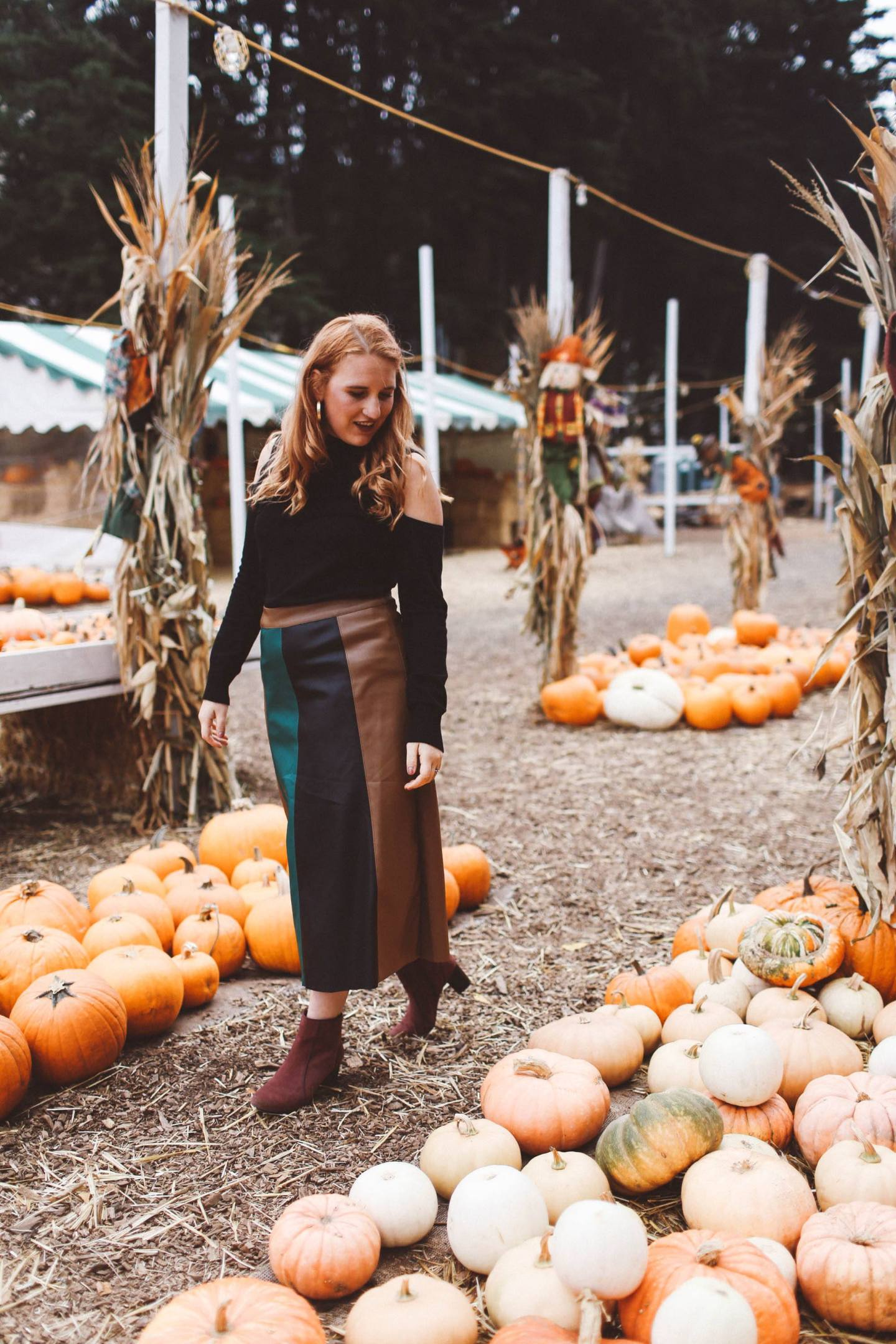 pumpkin patch woman skirt