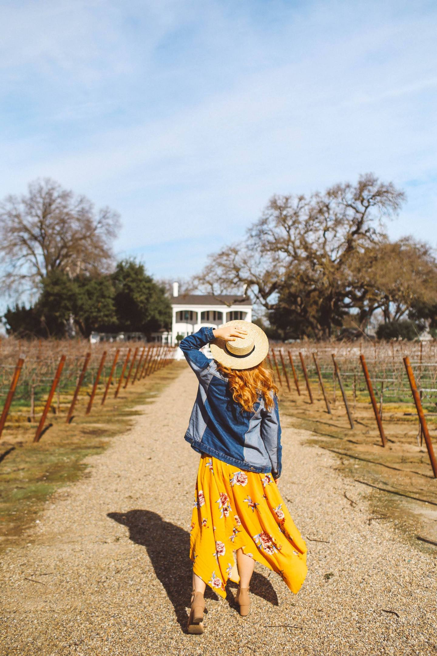 lodi california wine tasting yellow dress