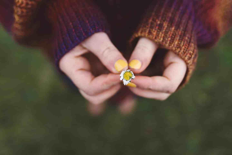 yellow flower holding