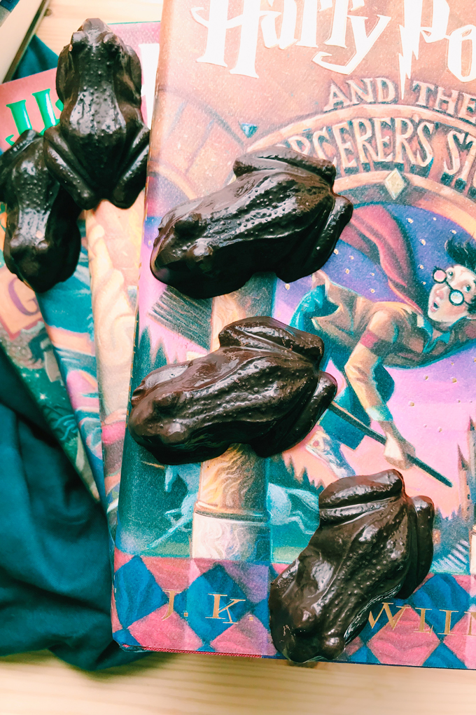 harry potter and the sorcerers stone with chocolate frogs on top