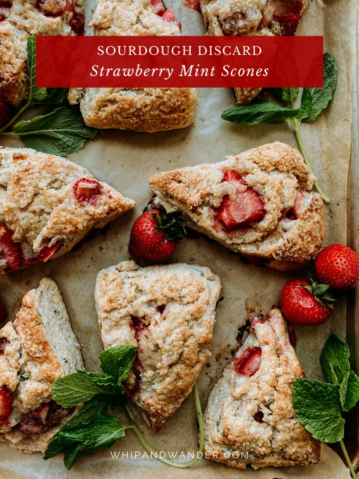 scones with strawberries and mint on a baking sheet with fresh strawberries and fresh mint