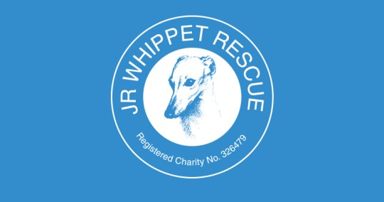 JR Whippet Rescue Online Shop Auction