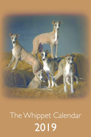 The Whippet Calendar – Stock Updated