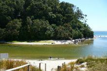 Whiritoa Beach estuary