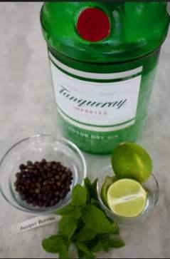 Gin&TonicSorbet
