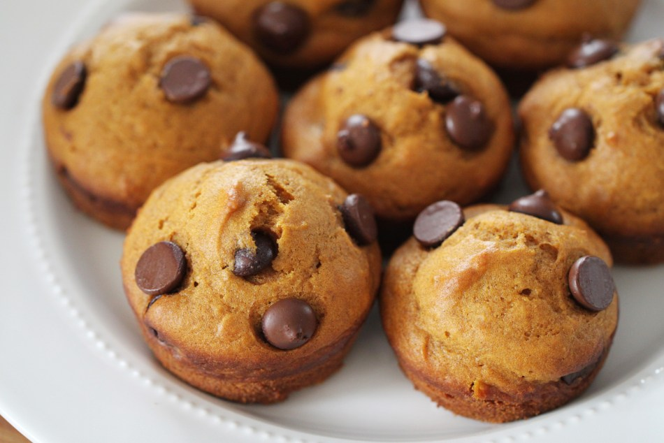 Several pumpkin chocolate chip muffins sit together on a white plate.