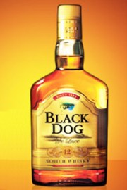 Black Dog 12. Image courtesy United Spirits.