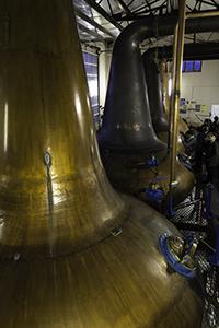 The stills at Craigellachie Distillery in Scotland. Photo ©2014 by Mark Gillespie.